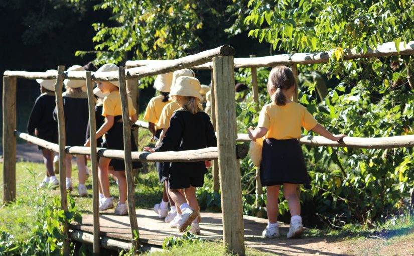 Grade R & RR Visit to Botanical Gardens